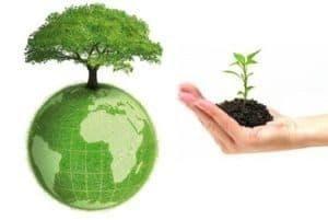 Quy định mới nhất về phí bảo vệ môi trường đối với nước thải  kể từ ngày 01/07